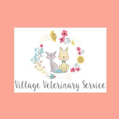 Village Veterinary Services, Inc.